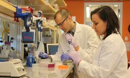 【やじうまPC Watch】 1gあたり214PB。高信頼性と高記録密度を達成した「DNAストレージ」技術