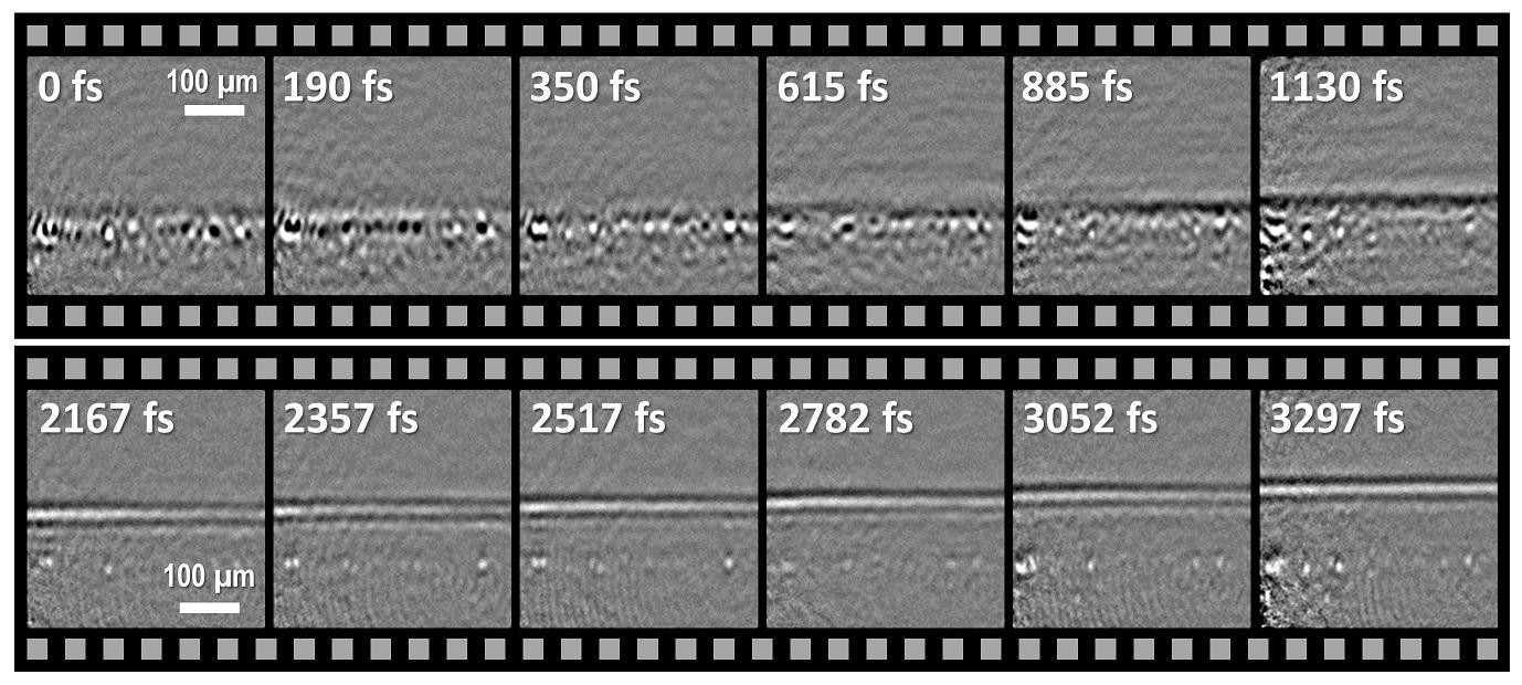 フォノン・ポラリトンの形成と伝播の様子。水平方向に超短パルスレーザーを線集光し、フォノンパルスを発生させた(上)。線集光されたレーザー光が複雑な電子応答と格子振動を誘起し、次第にフォノンパルスが形成される様子(下)。パルスが画像下方から上方へ光速の約6分の1という速度で伝わっていく様子。上下の撮影結果はともに平均フレームレート4.37Tfpsで画像を取得したもの