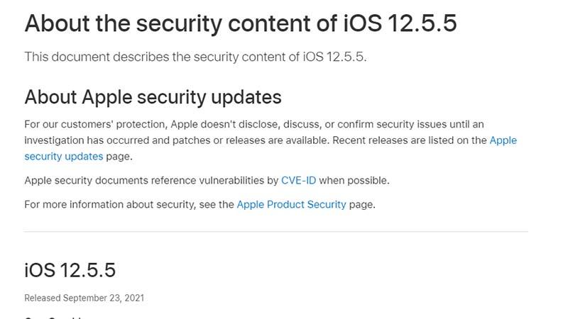 旧型iPhoneなどのiOS 12に脆弱性。セキュリティパッチ公開